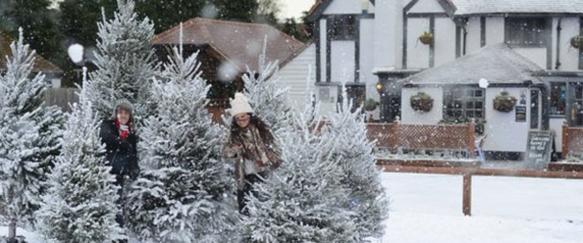 Dreaming of a White Christmas and a EuroMillions win