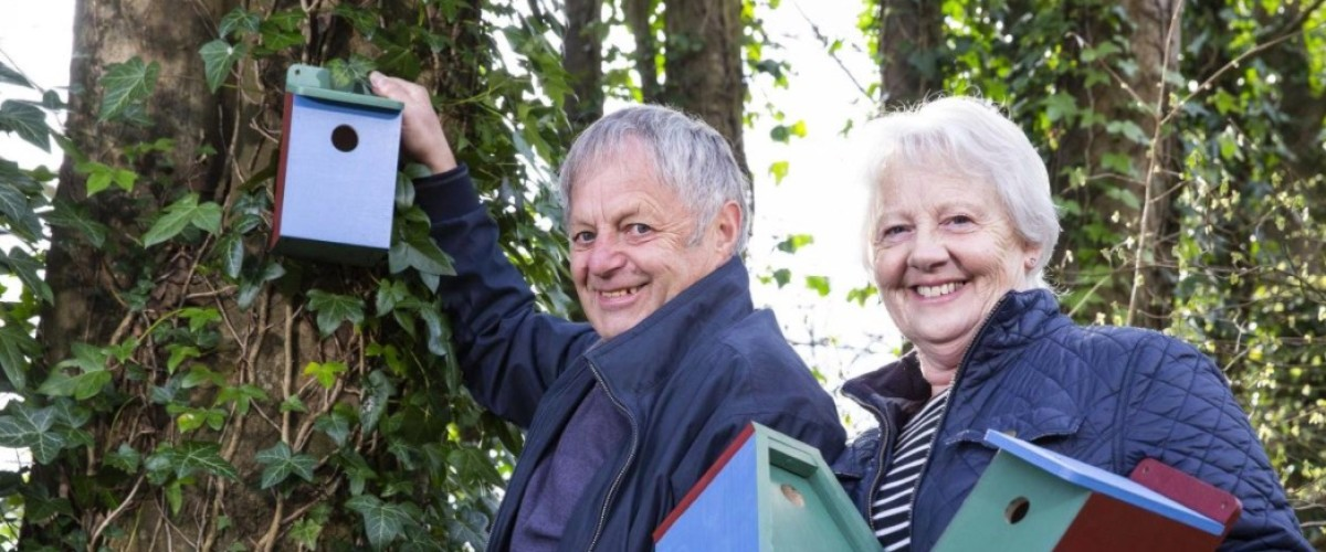 UK Lotto Winners Busy Building Bird Nesting Boxes