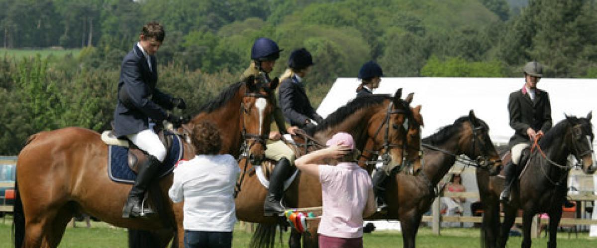 Ganador del Euromillones gasta millones en caballos para su joven novia